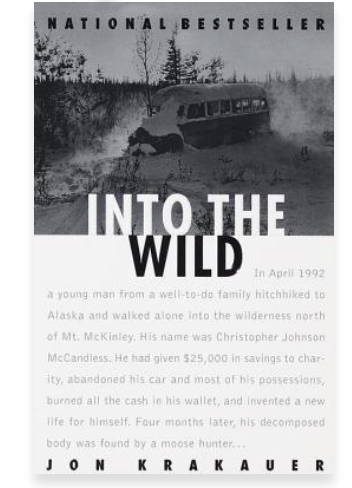 into the wild novel cover